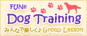 FUN!!DogTraining
